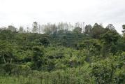 guatemala_2013_05
